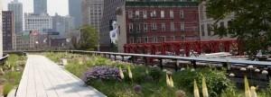 IMG_8052_High Line