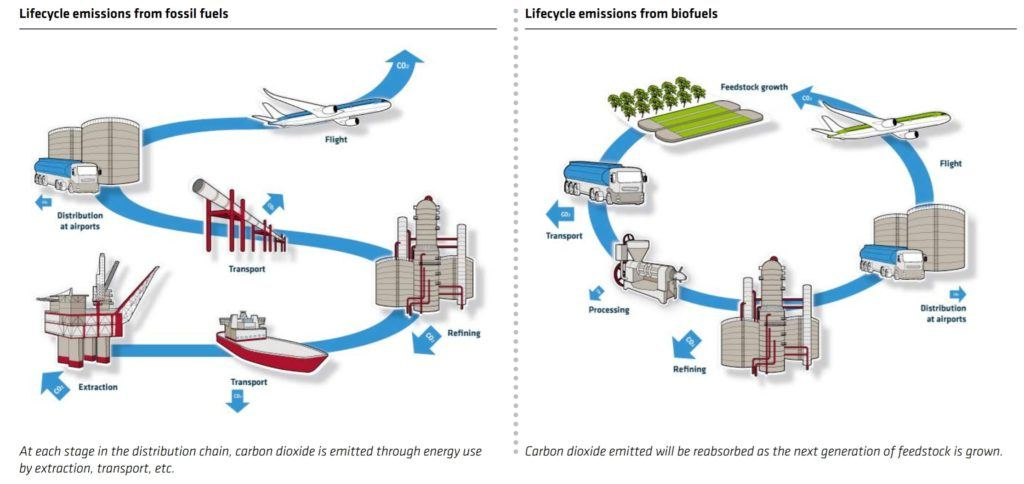 Life-cycle of biofuel compared with fossil fuel