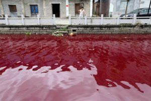 A river in Wenzhou, Zhejiang Province, contaminated by unknown substances (thought to be blood), Reuters, 2014