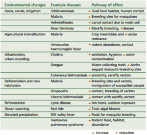 climate-change-and-diseases