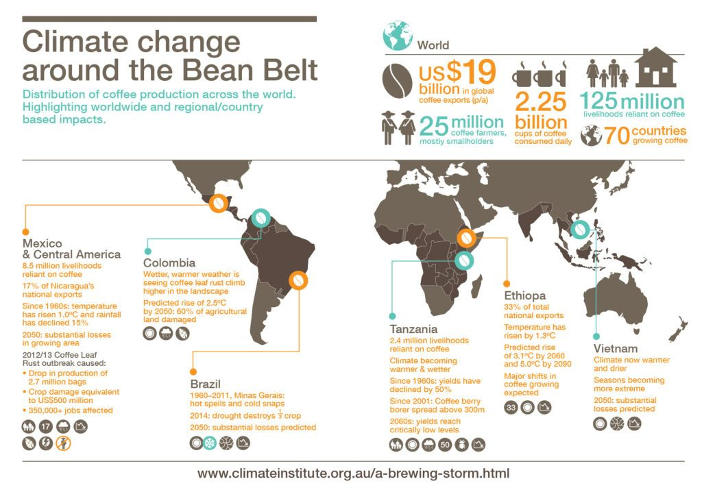 Fig 1 - Effect of climate change on the Bean Belt countries