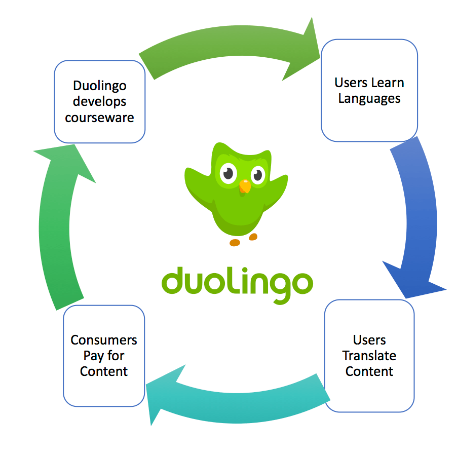 The virtuous Duolingo Cycle Source: Author