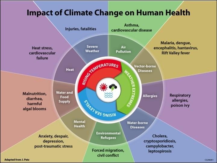 Figure-1: Impact of Climate change on human health (3)