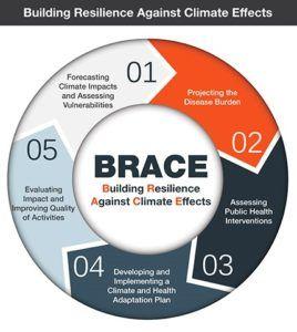 Figure 5: BRACE Framework [10]