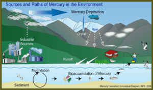 mercury-picture