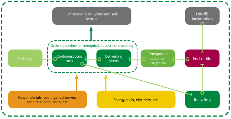 Lifecycle of Cardboard Product