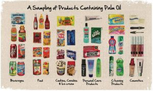 Example of products with palm oil