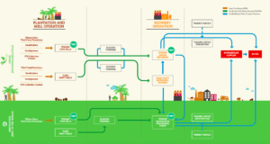 Complexity of Wilmar's supply chain