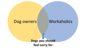 Dog Ownership and Workplace Obligations
