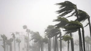 Storm. Google Images.