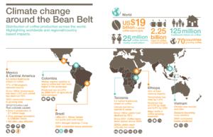 bean-belt