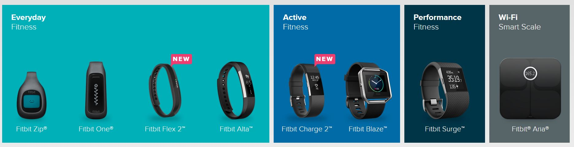 Figure 1. Fitbit's 2016 product offerings, categorized by activity level [1].
