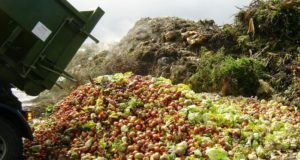Photo sourced from: http://www.slowfood.com/food-waste-forum/