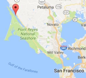 Tomales Bay. Picture source: Google maps