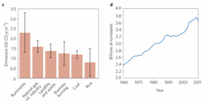"""Ruminants are responsible for more greenhouse gas emissions than natural case and coal. Number of ruminants continue to grow. Ripple et. al, """"Ruminants, climate change and climate policy,"""" Nature Climate Change. January 2014, vol 4."""