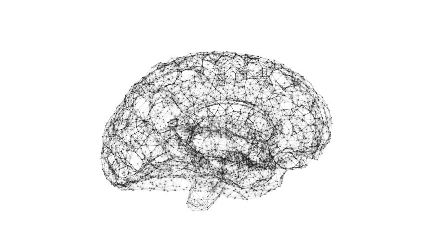 Brain image connected by data points to represent AI