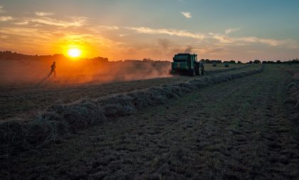 Forecasting agricultural vulnerabilities on a changing planet